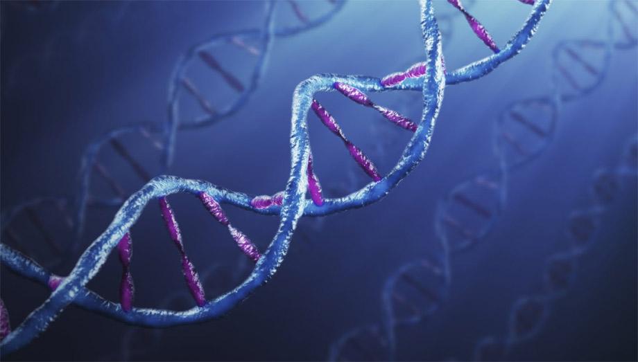 sito Web di incontri di DNA preferisco uscire fuori dalla mia razza