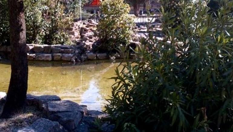 Il Parco Nemorense festeggia 82 anni insieme ai suoi bambini