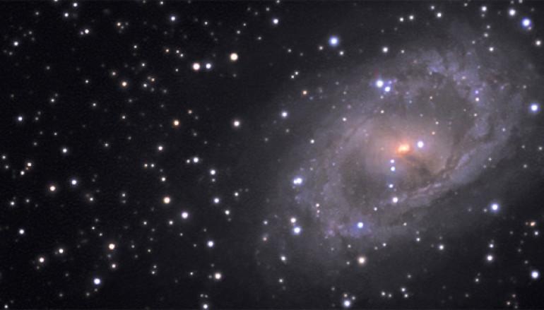 Vita da Stella, l'astronomia spiegata ai bambini al Planetario di Roma