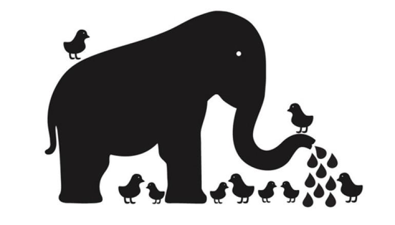 Attività per bambini e ragazzi al Museo di zoologia di Roma