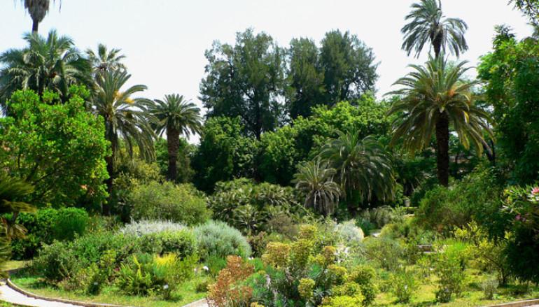 Visita guidata all'Orto Botanico per bambini e adulti
