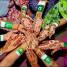 Festa del Pakistan tra colori, tradizioni e giochi per bambini