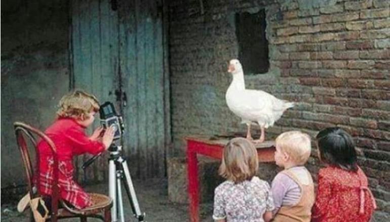 Scatta in Villa il laboratorio fotografico per bambini da Technotown