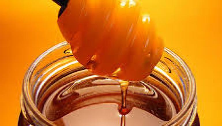 Alla Casa del Parco il laboratorio per vedere come si fa il miele