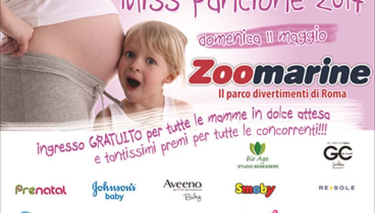 Da Zoomarine per la 5° edizione di Miss Pancione