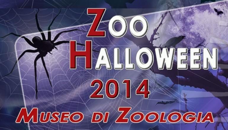Festa di Halloween per bambini e ragazzi al Museo di Zoologia
