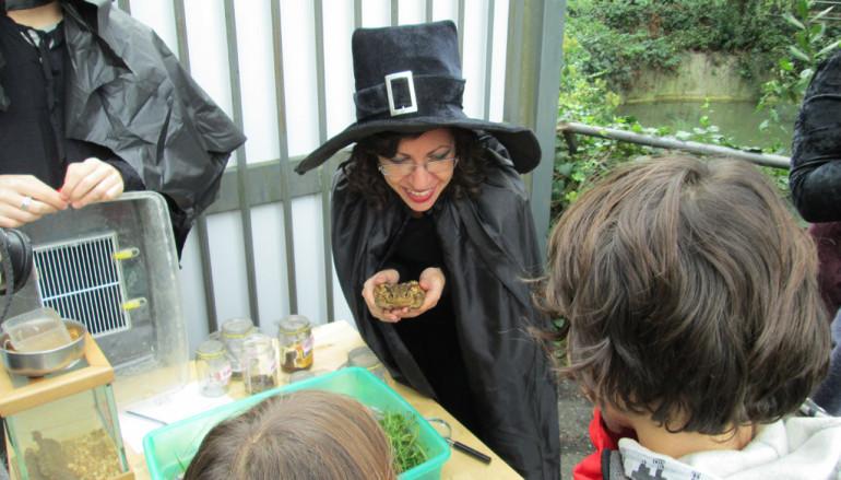 Halloween è già arrivato… al Centro Recupero Fauna Selvatica Lipu