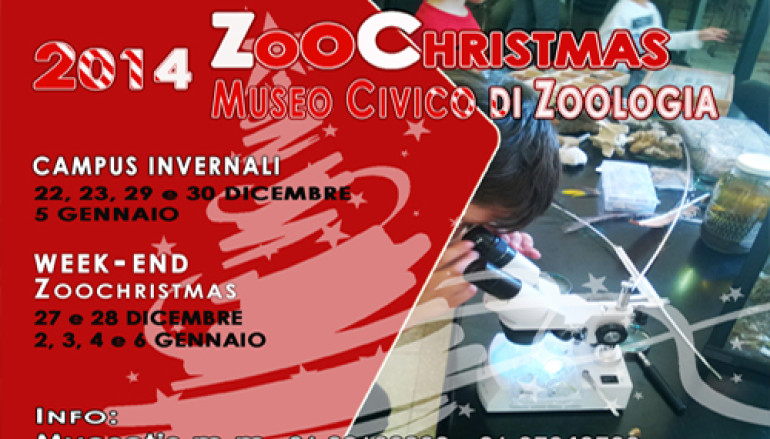 Centri invernali per bambini al Museo di Zoologia di Roma