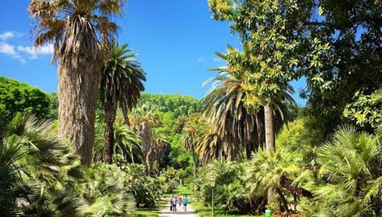 MeravigliOrto – esploriamo l'Orto Botanico