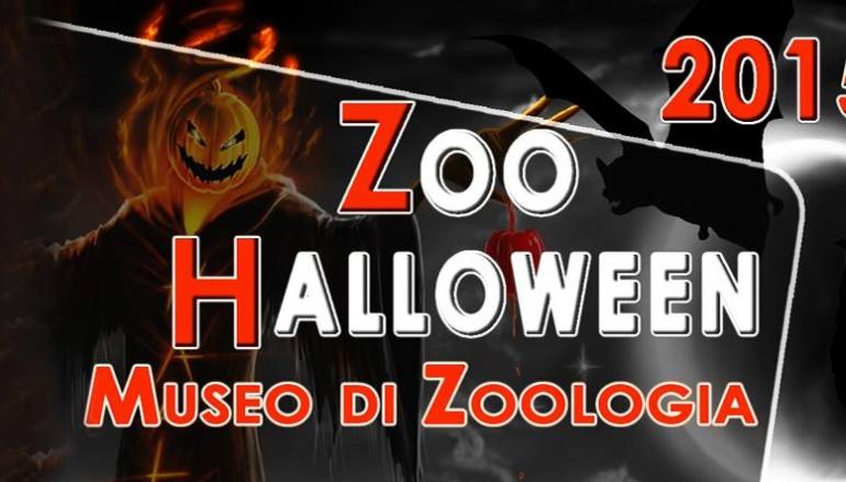Halloween 2015 al Museo di Zoologia di Roma