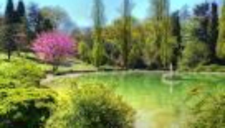 Dov'è la Primavera? Birdwatching, giochi e attività insieme a mamma e papà a Villa Borghese dai 6 agli 11 anni