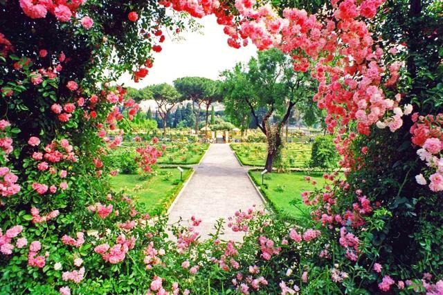 Visita guidata al roseto comunale con disegno dal vero for O giardino di pulcinella roma
