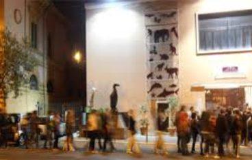 """""""Passeggiata scientifica"""" al Museo Civico di Zoologia"""