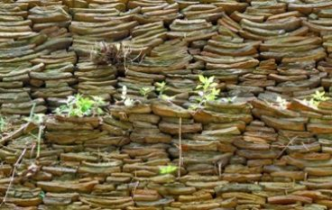 Piccoli Archeologi al Monte dei cocci Visita guidata dai 6 anni a Testaccio