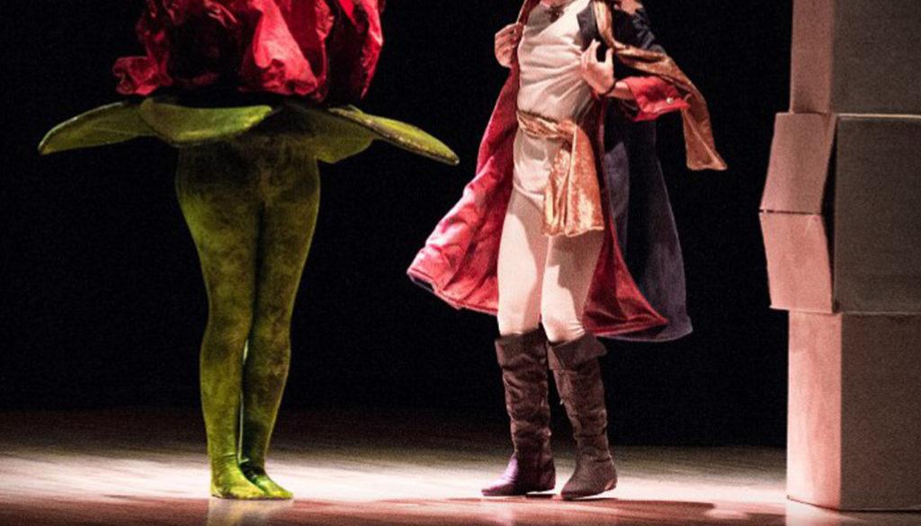 piccolo principe teatro verde di Roma
