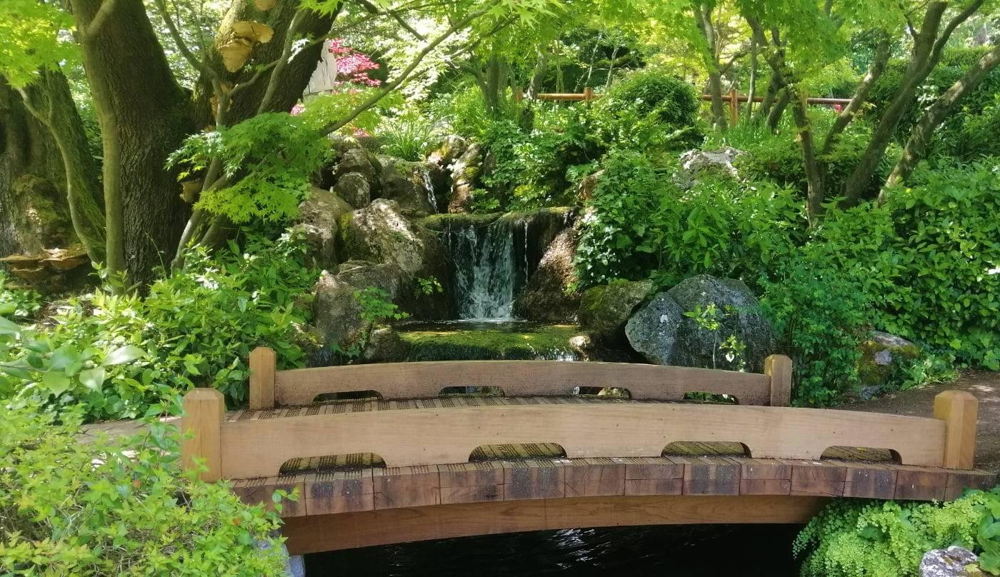 orto botanico giardino